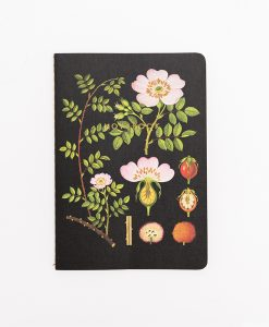 "BOTANICAL NOTEBOOK ""ROSE HIP"""