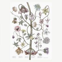 jonna-fransson-print-blomster